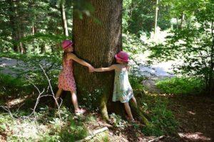 ludzie przytulajacy drzewo