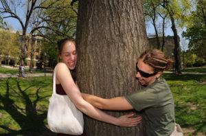 przytulanie drzewa
